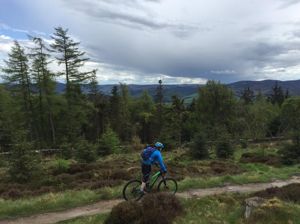 7stanes-glentress-mountain biking