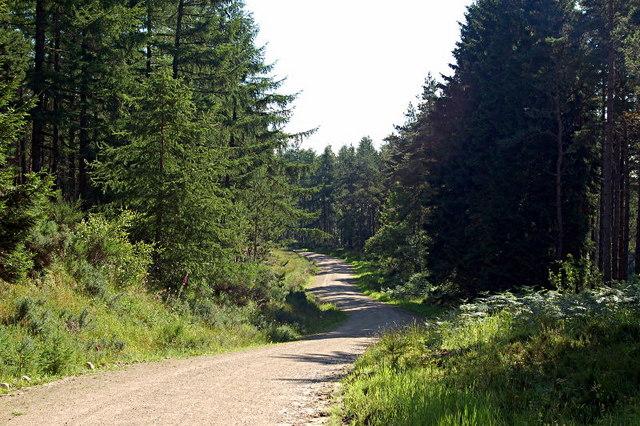 aldie burn forest mountain biking trail in Scotland
