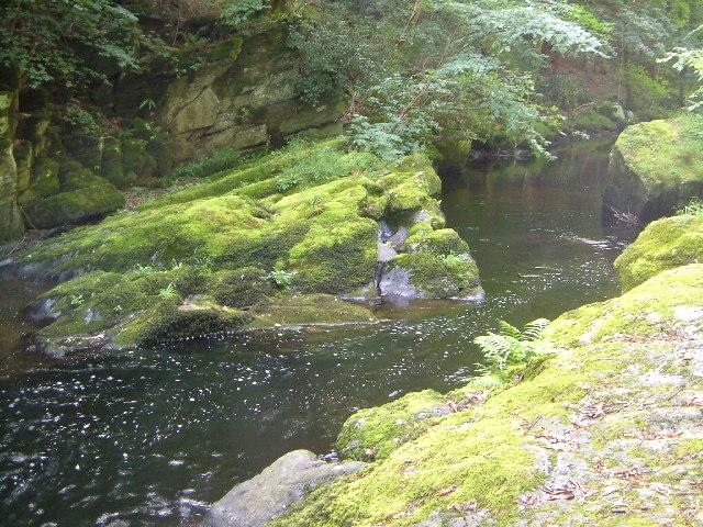 long-pool wild swimming devon exmoor