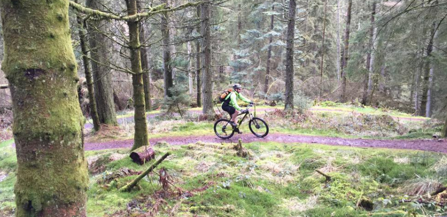 a mountain biker in the forest at 7stanes Ae in Scotland