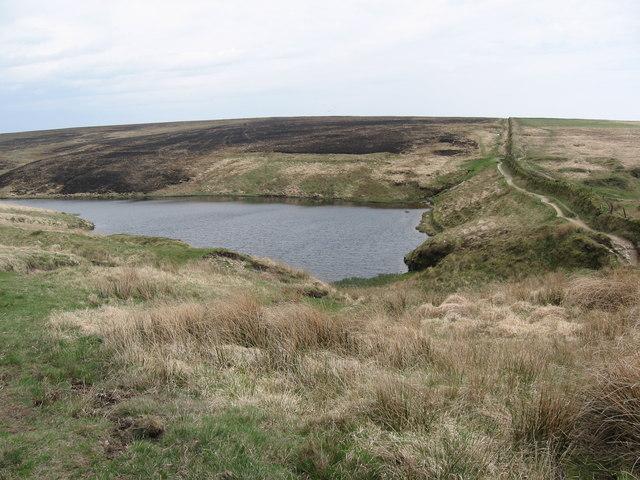 pinkery-pond wild swimming devon